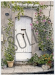 Door in Saint-Remy de Provence SOLD