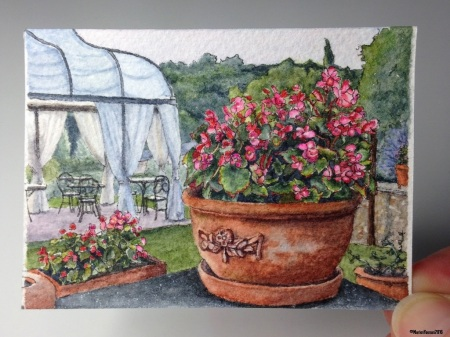 35 Begonias at Dusk studio