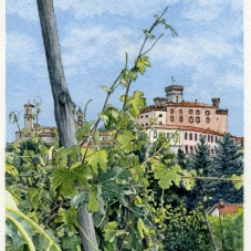 Barolo Vineyard (2017) - sold