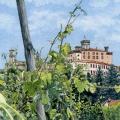 Barolo Vineyard –sold