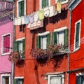 Burano Laundry with Flowers –sold