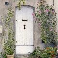 Door in Saint-Rémy de Provence –sold