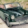 Green Vintage Fiat