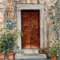 Lemon Tree Door, Orvieto – sold