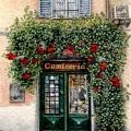 Rome Door inDecember