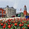 Springtime In Niagara