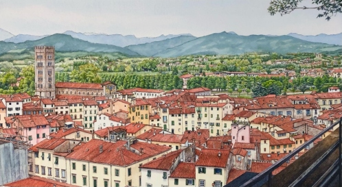 Lucca From The Guinigi Tower